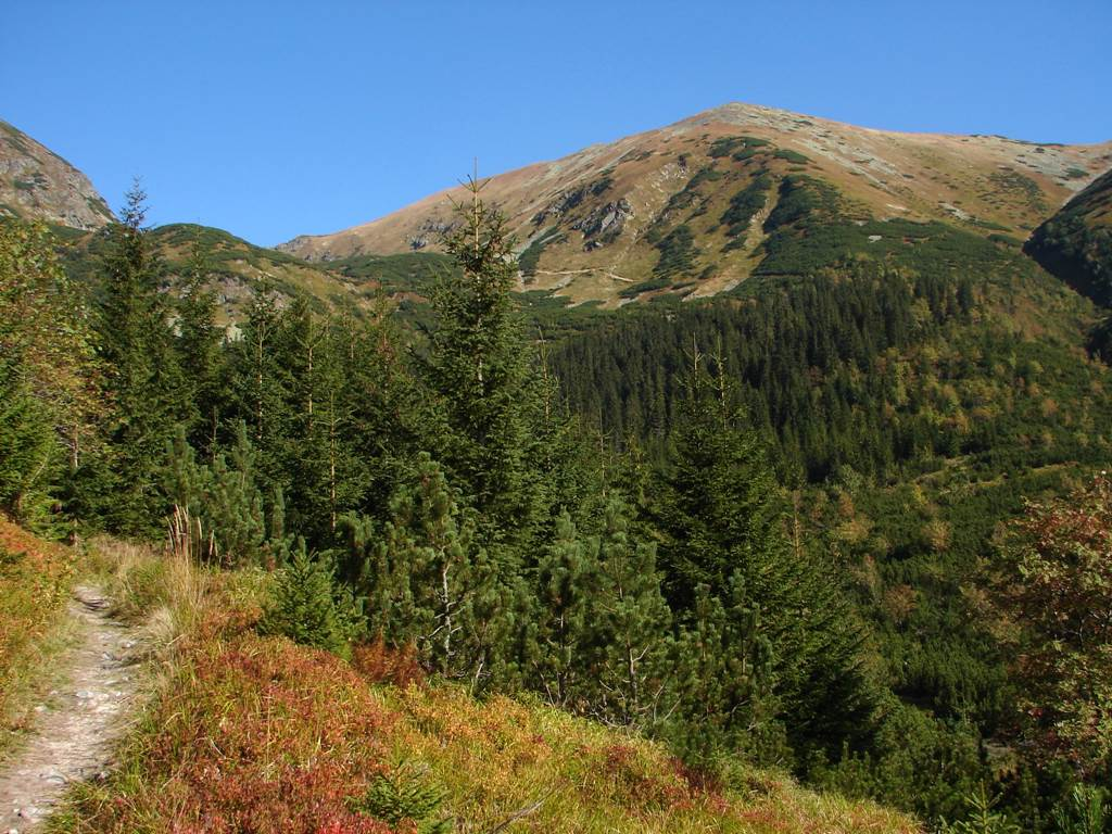A Jamniki-völgyből a Jamniki-hágón át a Volovecre Forrás: Nagy Árpád