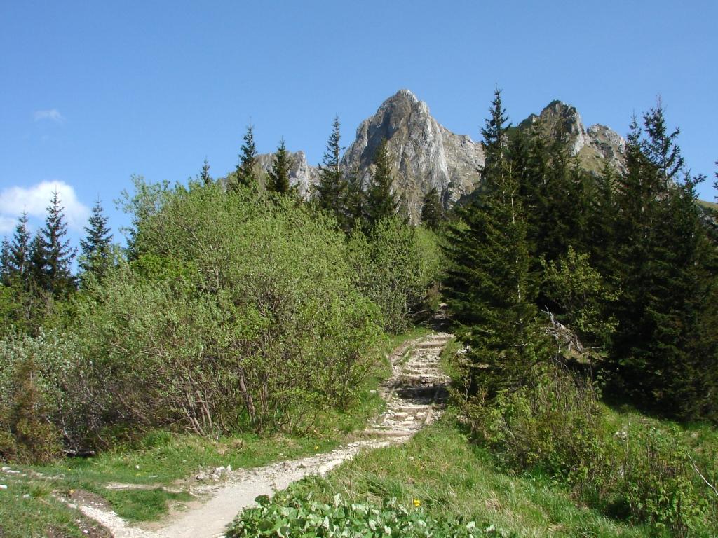 A Kis-réti-völgyből a Gombás-nyergen át a Giewontra ForrĂĄs: Nagy Árpád