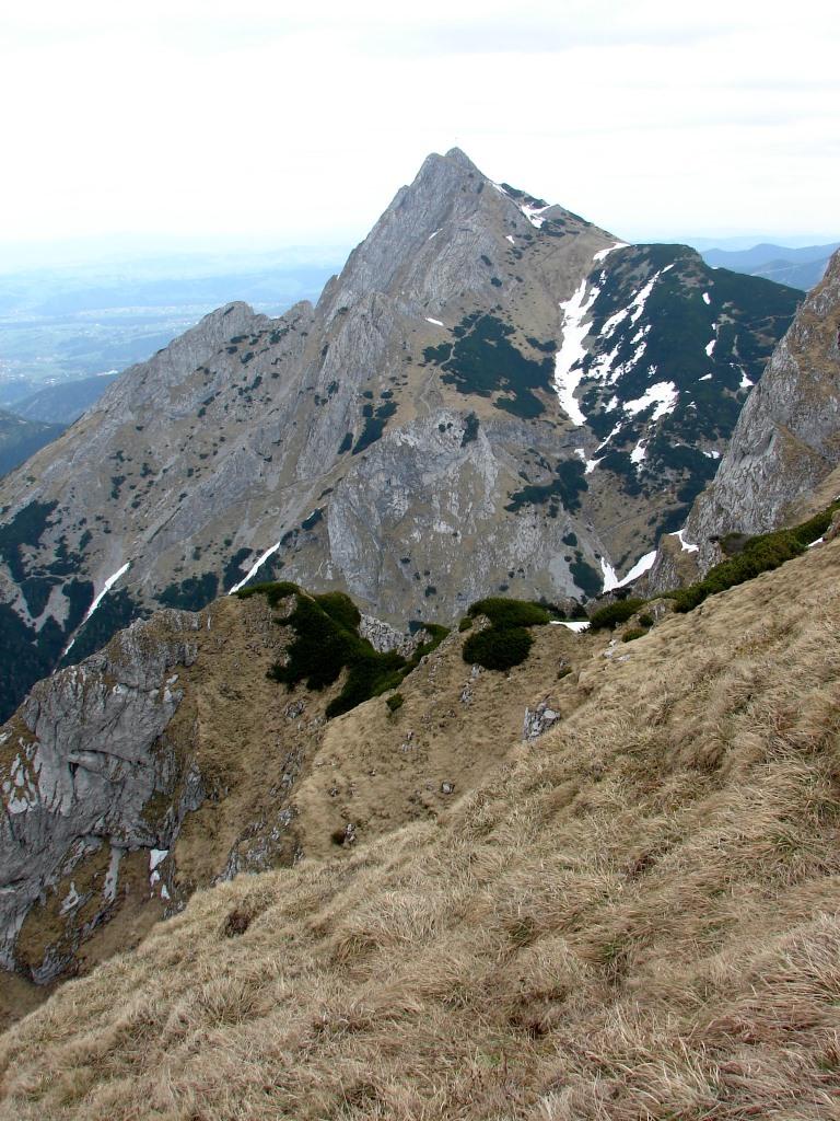 A Kis-réti-völgyből a Miętusz-nyergen át a Kis-réti-hegyre ForrĂĄs: Nagy Árpád