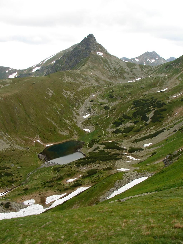 A Szürke-rétről a Volovecen át a Koncsisztára Forrás: Nagy Árpád