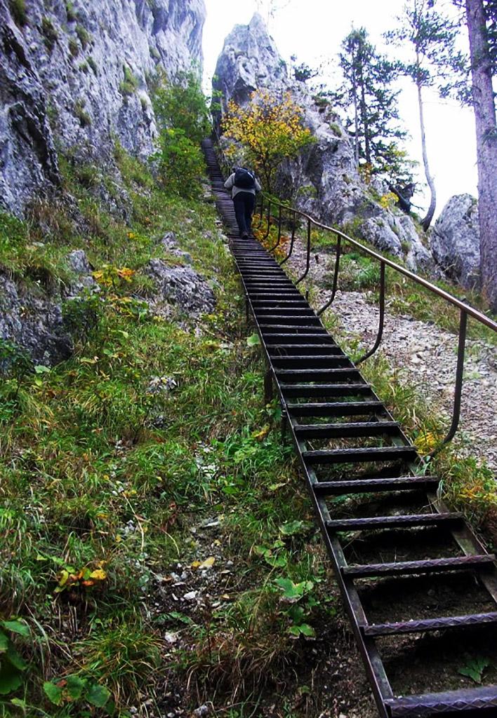 A Schönbrunner-lépcső 40 méter hosszú Forrás: Nyáry Tamás