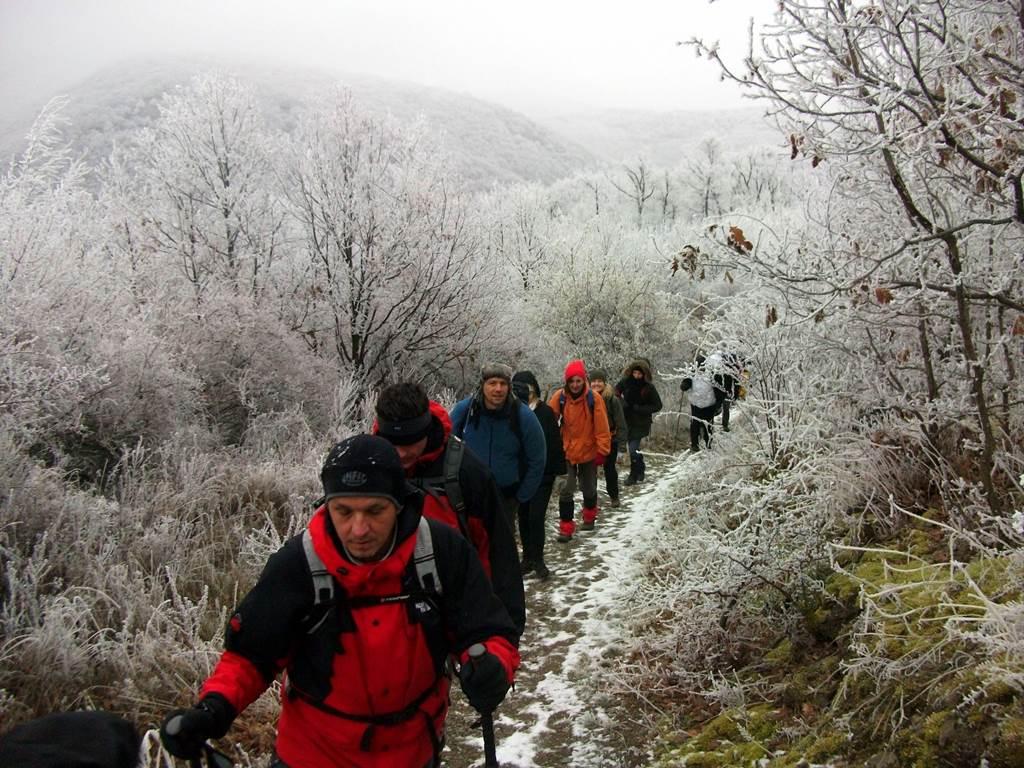 Téli túra a Bükk-hegység déli lejtőin Forrás: Trekk.hu (c) Nyáry Tamás