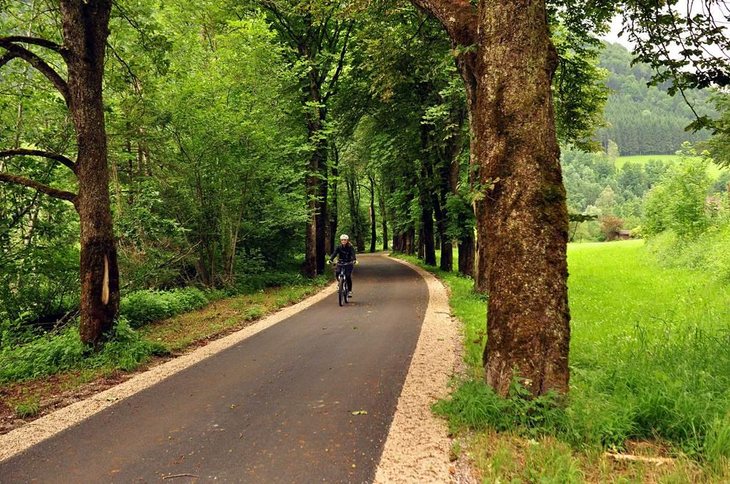 Árnyas fákkal szegélyezett szakasz Forrás: www.mozgasvilag.hu