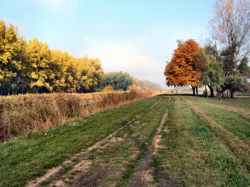 Keleti kerékpáros körtúra Debrecen környékén Forrás: Magyar Kerékpárosklub
