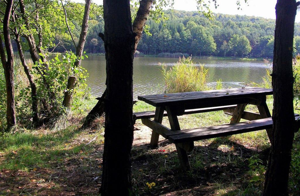 Hársas-tó pihenő Forrás: Nyáry Tamás