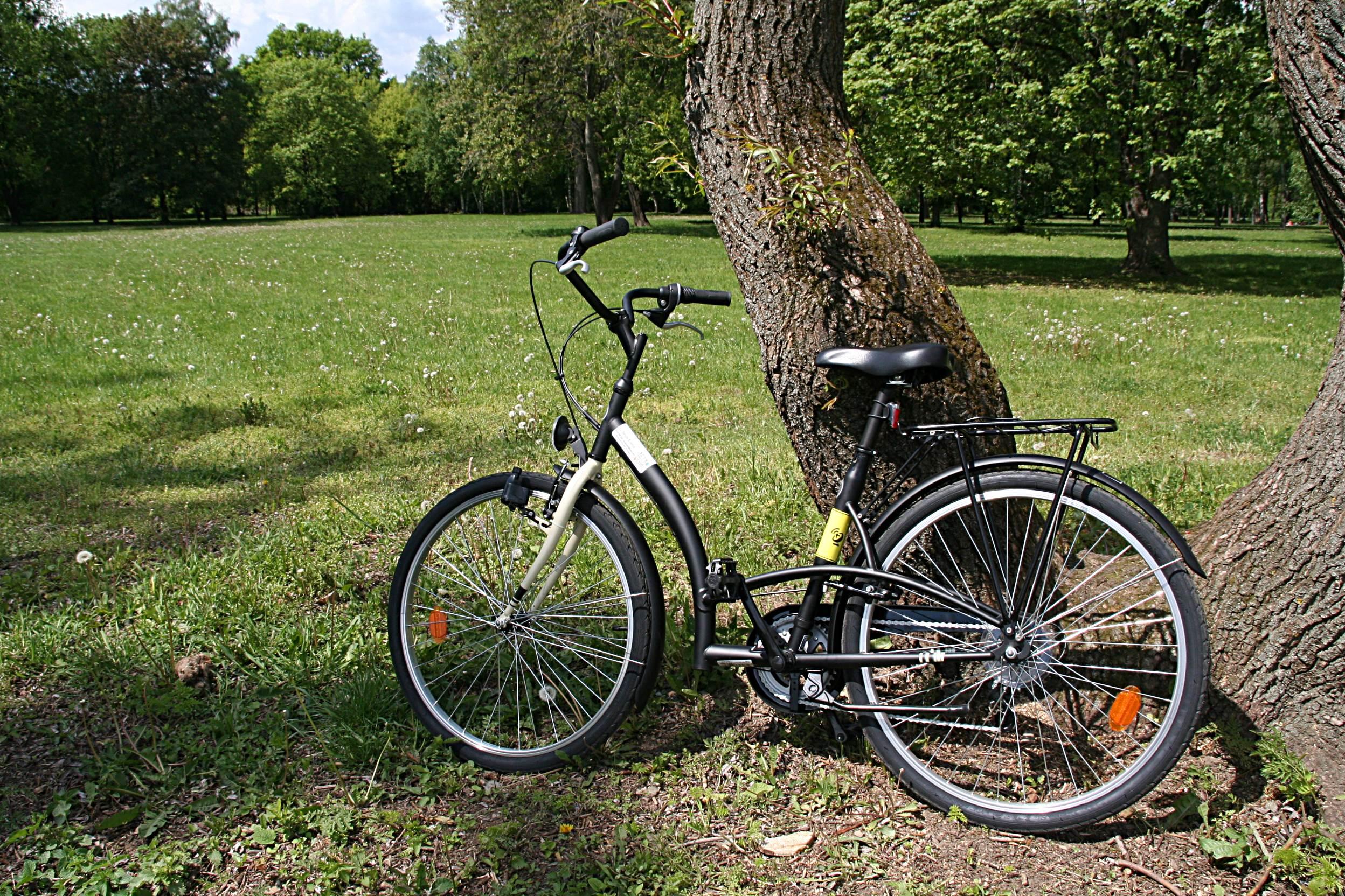 Kölcsönzött retro kerékpárunk a kassaiak kedvelt pihenő parkjában ForrĂĄs: www.mozgasvilag.hu