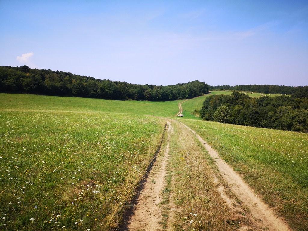 OKT 18: Nógrád-Becske Forrás: Bárhogy is legyen: mozogj!