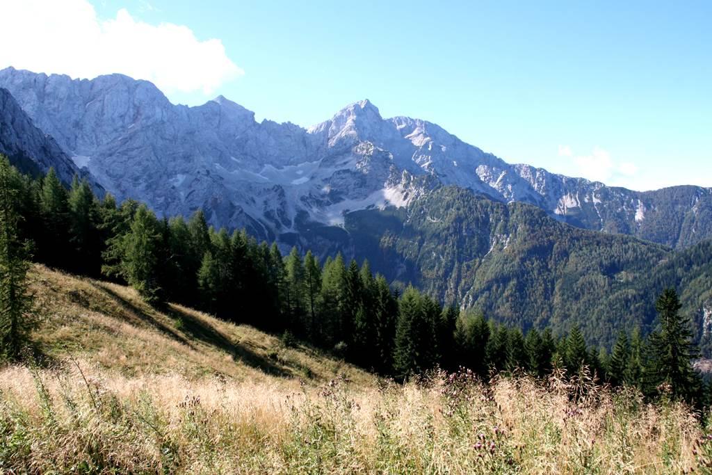 Végre kiértünk a mezőre! Forrás: www.mozgasvilag.hu