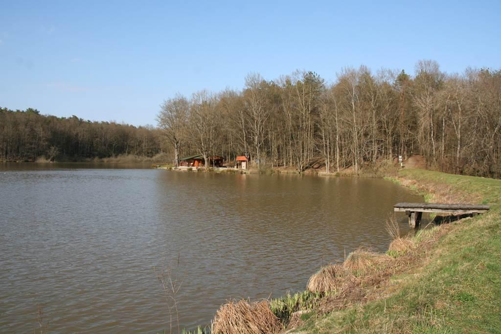 A Bakonaki tó Forrás: www.mozgasvilag.hu