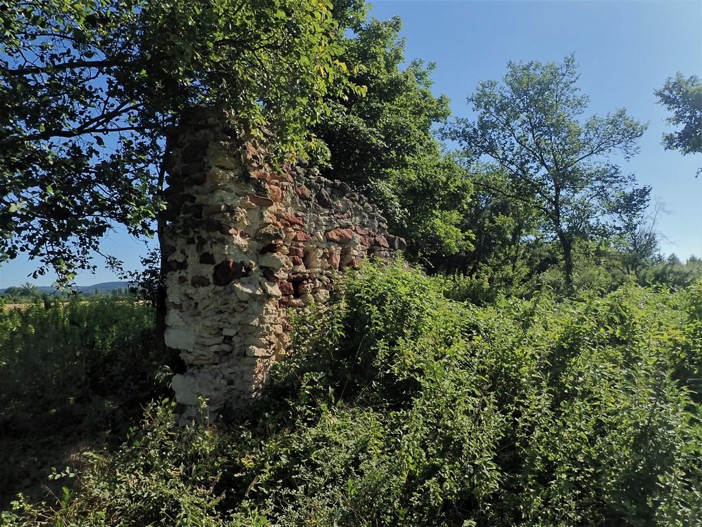 A Puszta palota egykoron büszke épületének maradványa. Forrás: Nyáry Tamás