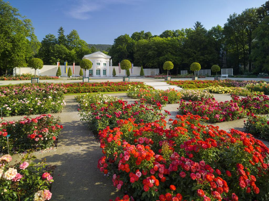 Túra kertbarátoknak Forrás: © Wienerwald Tourismus GmbH