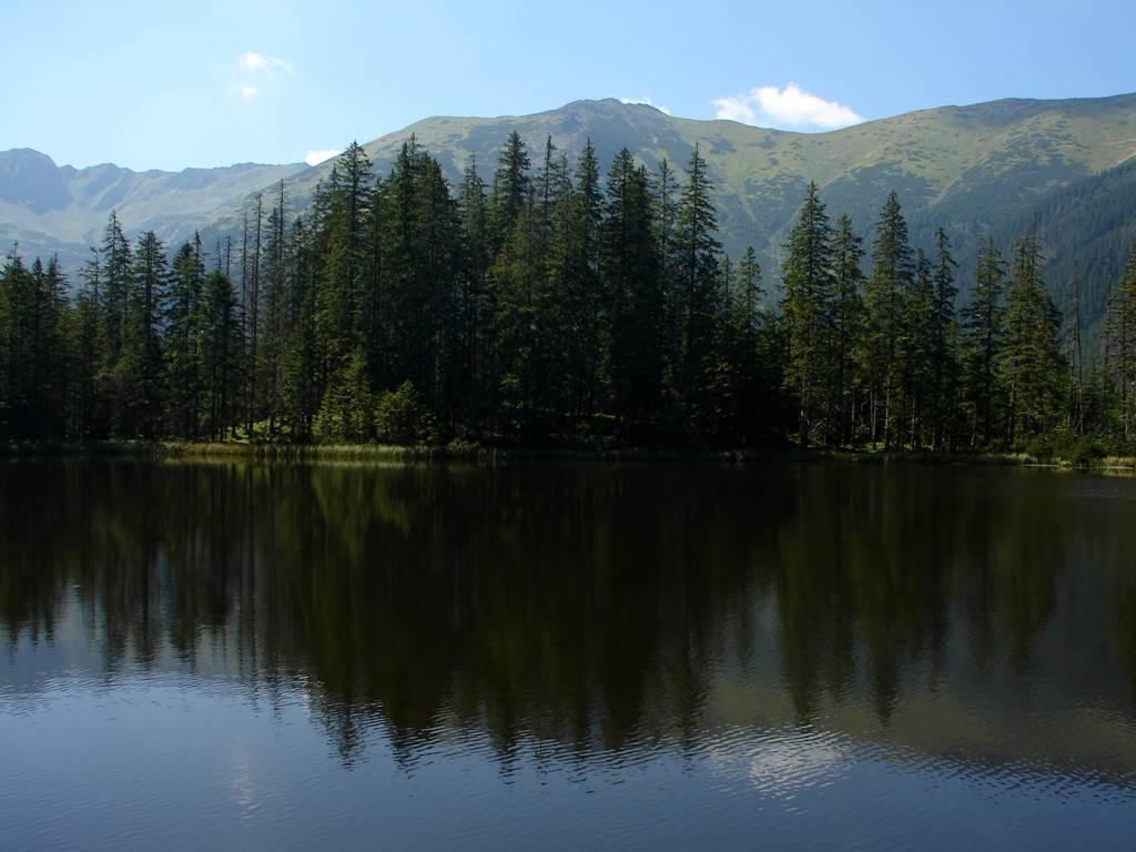 Kiry parkolóból a Fenyves-tóhoz tett kitérővel a Sötét-hegyre Forrás: Nagy Árpád