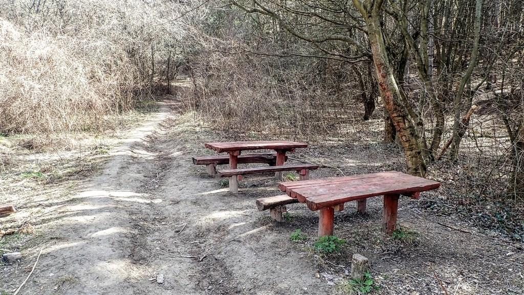 Pihenőhely a Nyakas-kő közelében Forrás: Nyáry Tamás