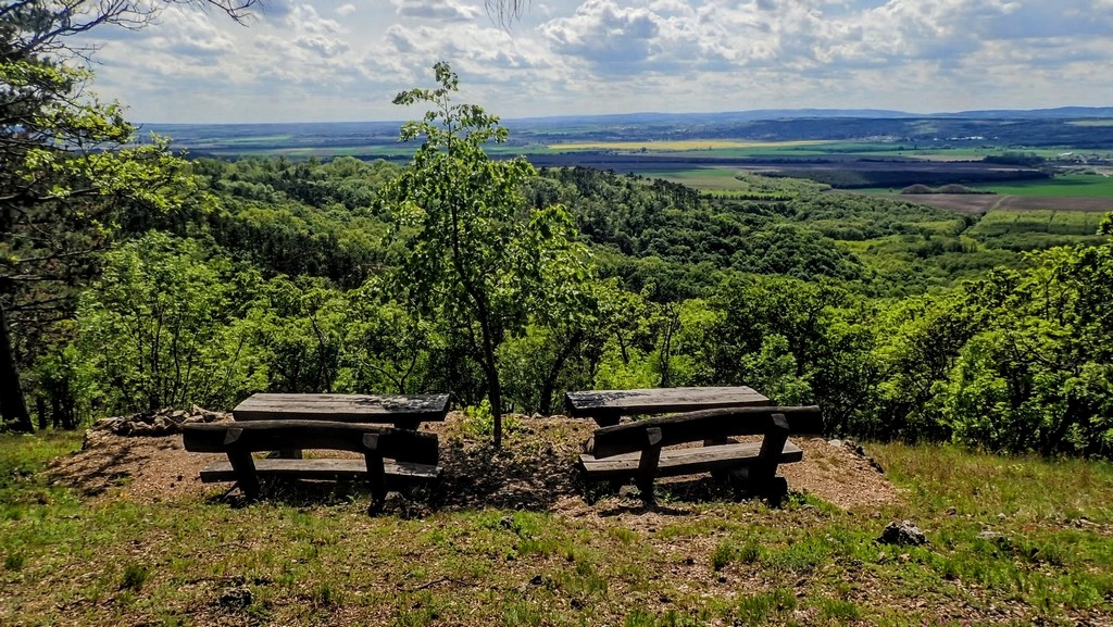 Pihenőpadok az Ilona-lak erdészháznál Forrás: Nyáry Tamás