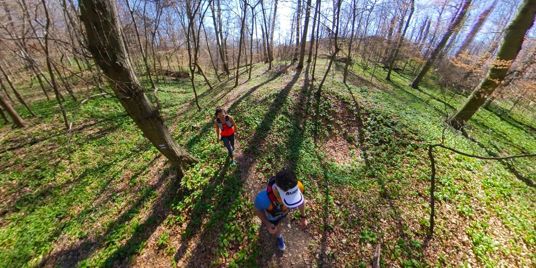 Valahol az erdőben Forrás: Bárhogy is legyen: mozogj!