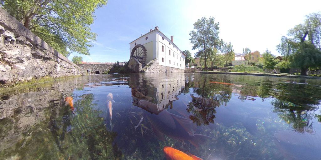 Tapolcai tó Forrás: Bárhogy is legyen: mozogj!
