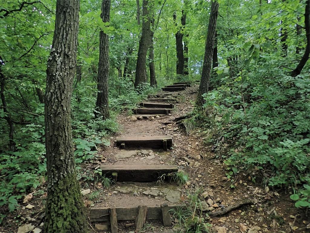 99 lépcsőfok a Zádorvárhoz Forrás: Nyáry Tamás
