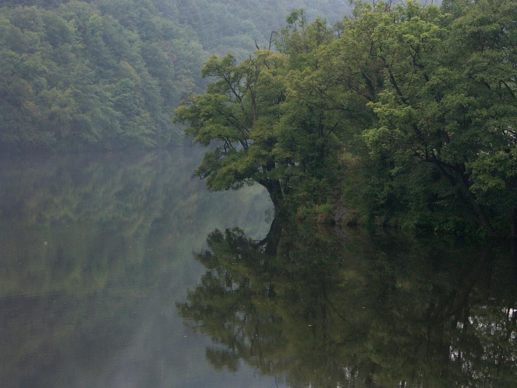 A Hámori-tó a fordító