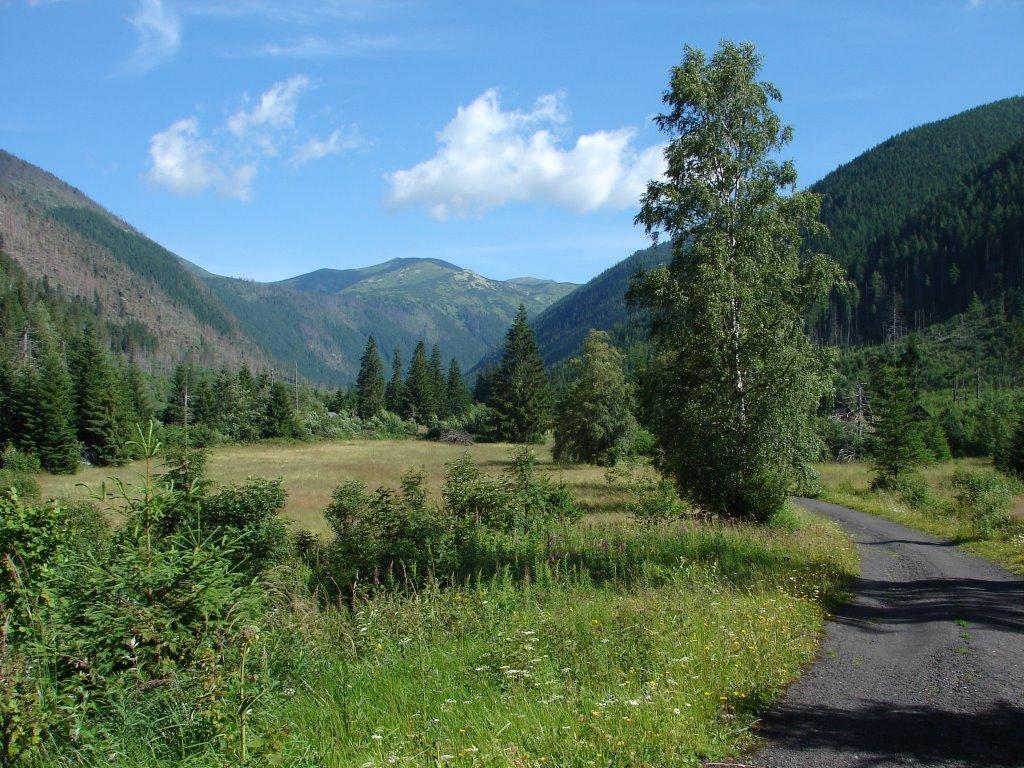 Podbanszkóról a Csendes-völgyön át a Száraz-hágóra ForrĂĄs: Nagy Árpád