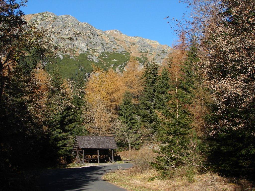 Poprádi-tó villamos megállótól a Poprádi-tóhoz ForrĂĄs: Nagy Árpád