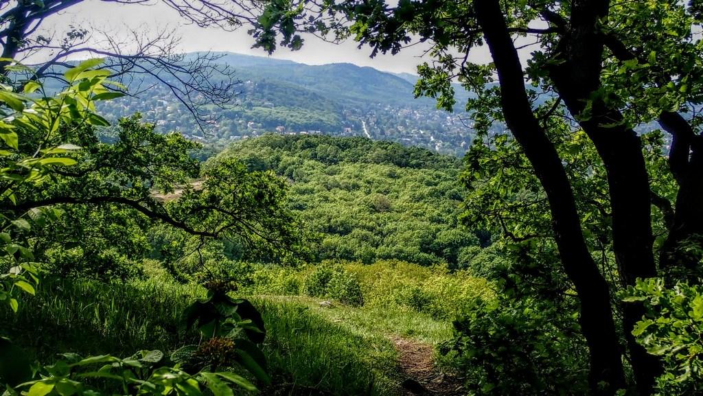 Érdemes a panoráma miatt néha-néha a fák között kilesni Forrás: Nyáry Tamás