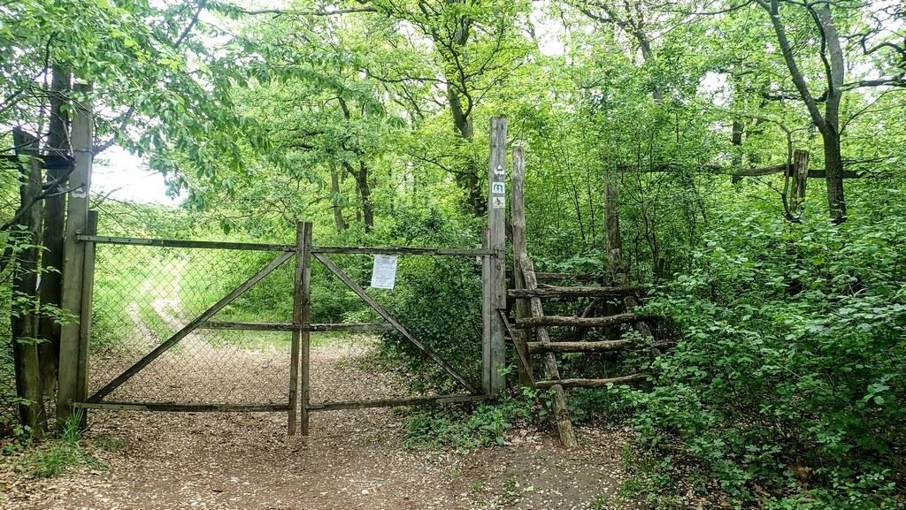 Létrás átkelés a kerítésen át a túloldalra Forrás: Nyáry Tamás