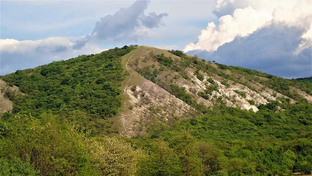 A Meszes-hegy alulnézetből Forrás: Nyáry Tamás