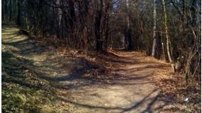 Szpeszártli futóútvonal (nem szeszpárti)
