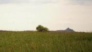 Salgó-vár közepes túra