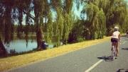 Kis-Balaton családi kerékpártúra