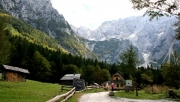 Alpesi mező túra a Goli vrh nyeregbe