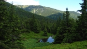 Jalóci-völgyből a Pálenica-hágón át a Szürke-hegyre
