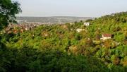 Zöld szigetek Budaörs felett