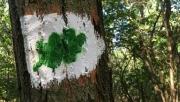 Keresztúri-erdő tanösvény | www.mozgasvilag.hu