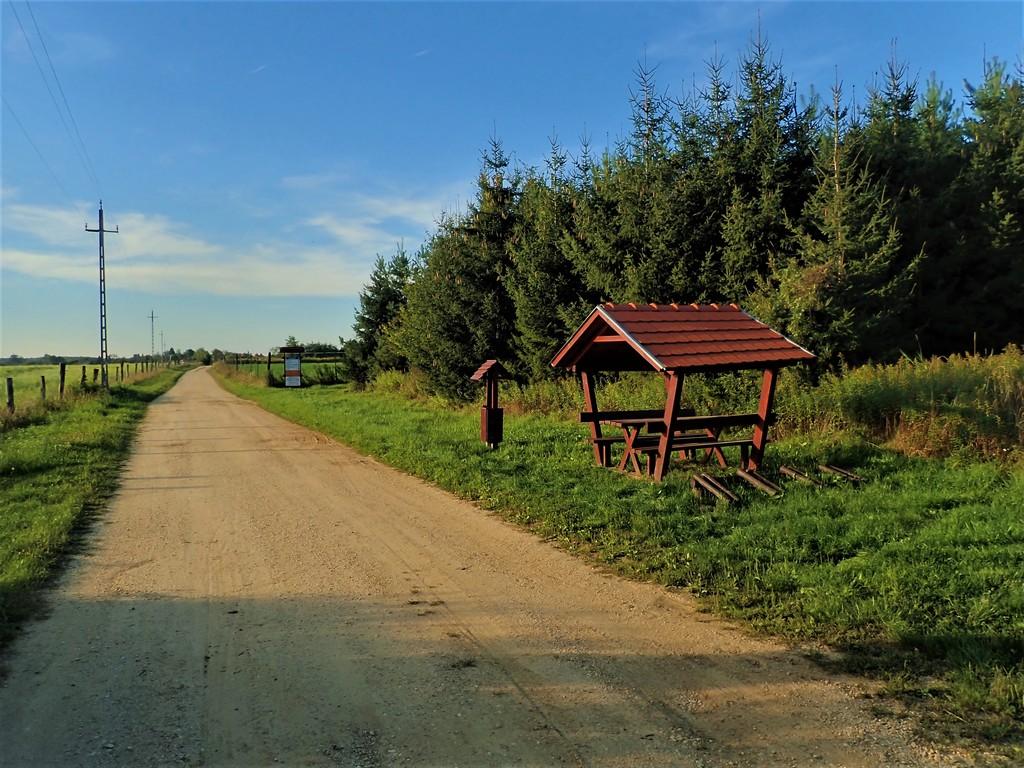 Az Ispánkot Nagyrákossal összekötő erdészeti út Forrás: Nyáry Tamás