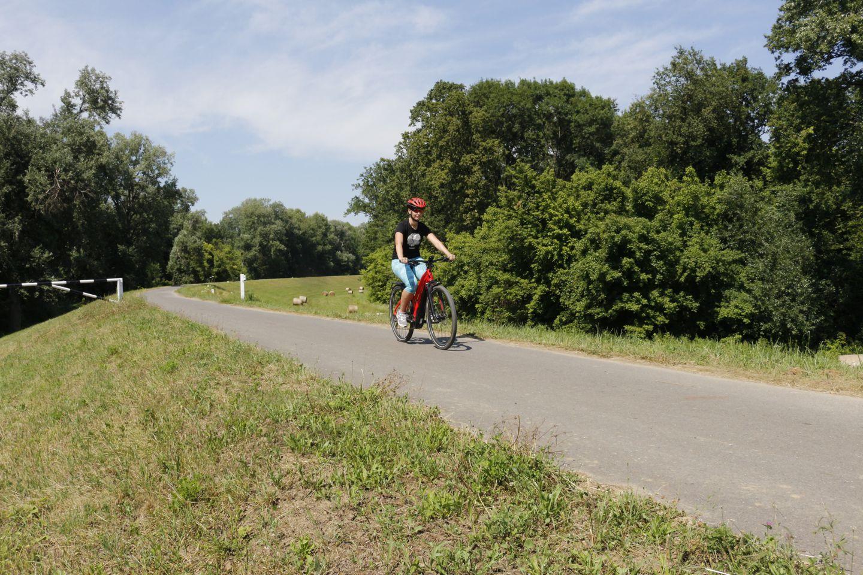 Tokaj - Tiszadob Forrás: Mozgásvilág.hu