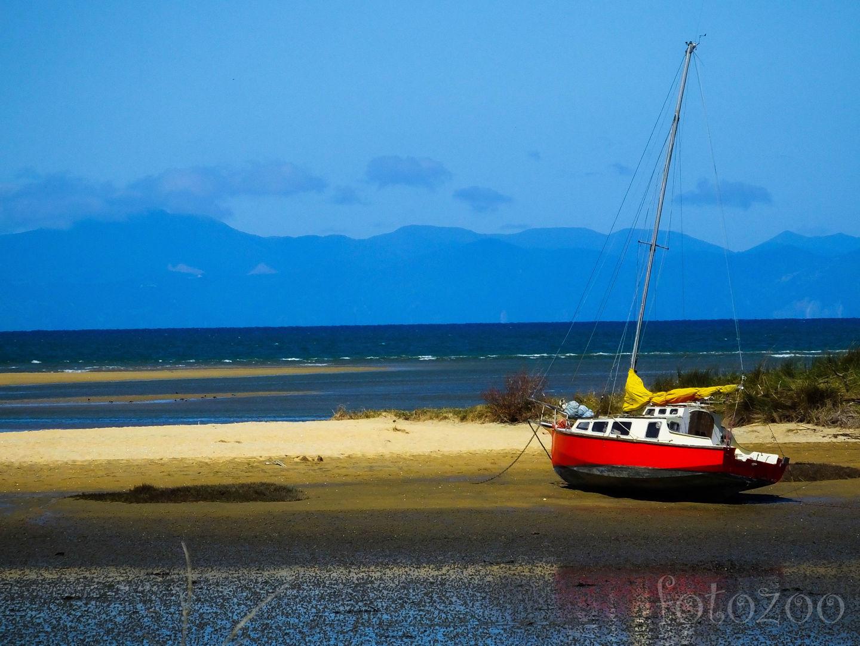 Új-Zéland tengerpartjait inkább vitorlások tarkítják, semmint fürdőzők. Forrás: Fotozoo - Horváth Zoltán