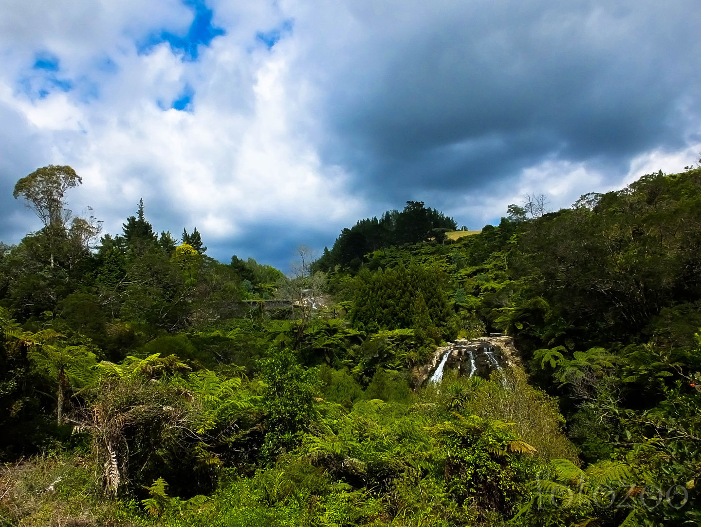 Owharoa vízesés. Alacsony vízállásnál nem olyan látványos,de a páfrányerdő igazán impozáns Forrás: Horváth Zoltán - Fotozoo