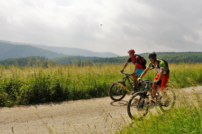 Hohe Wand Wiese trailcenter a bécsi erdőben Forrás: Mozgásvilág
