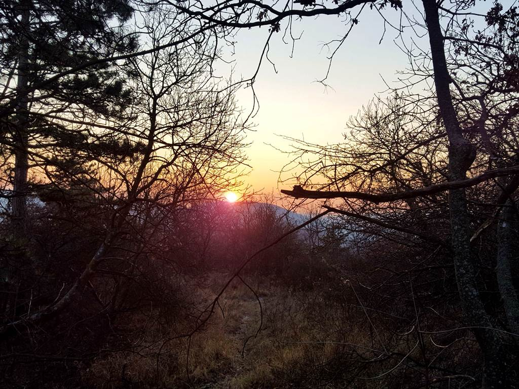 A lemenő nap sugarai a horizonton Forrás: www.mozgasvilag.hu