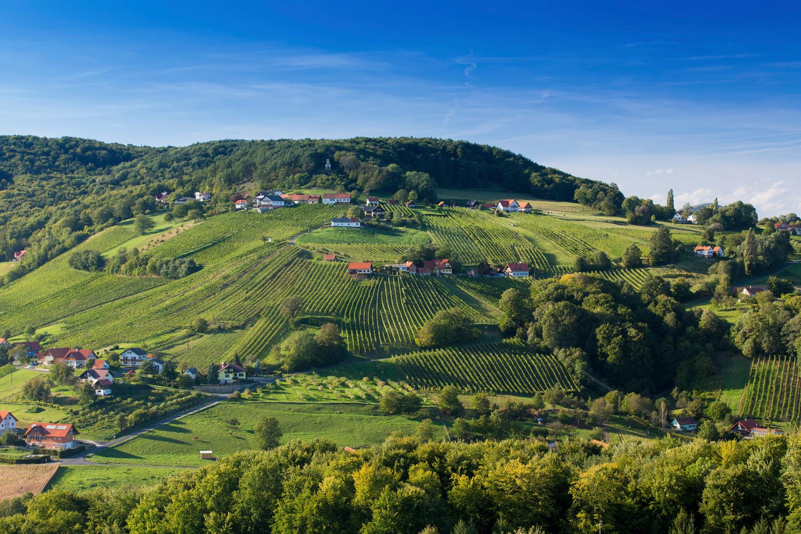 Vulkánföld Rosenbergnél Forrás: (c) Steiermark Tourismus