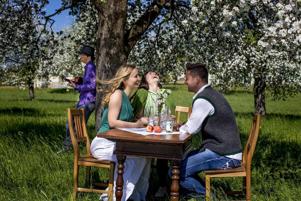 Piknik az almavidéken Forrás: www.steiermark.com
