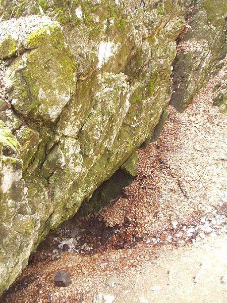 Csipkéskúti-víznyelőbarlang Forrás: Wikipédia (Czina Tivadar)