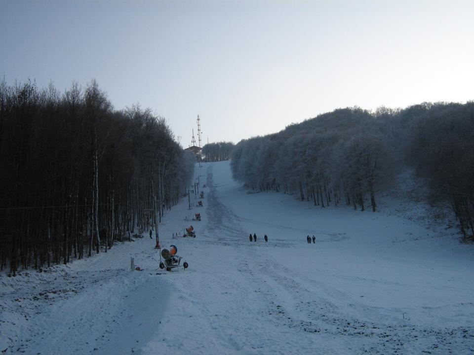 82092-SnowShow1.jpg