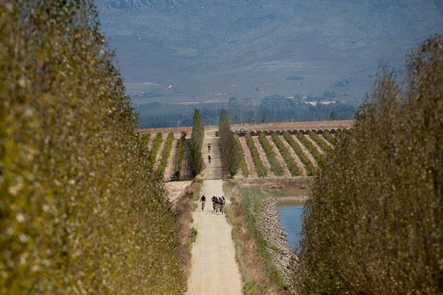 82217-Beautiful-scenery-awaited-both-viewers-and-riders-in-Tulbagh..jpg
