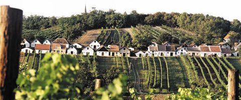 82547-Weinviertel-r-gi-.jpg