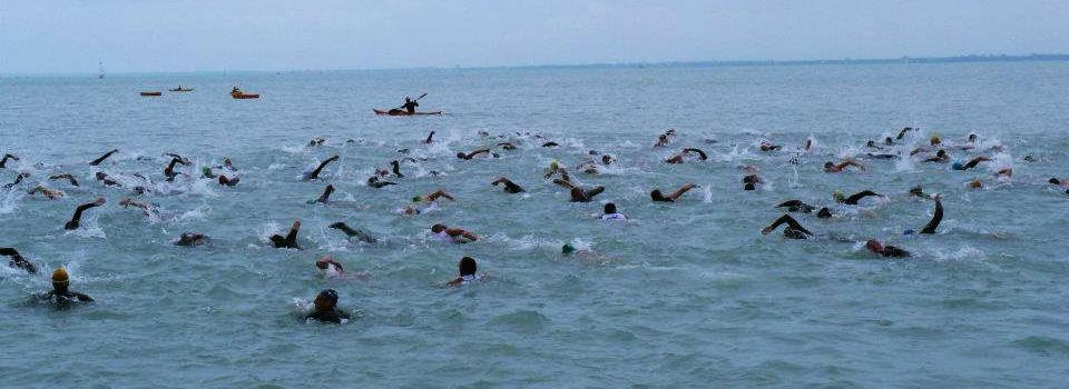 nyílt vízi úszás