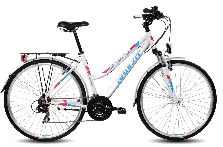 Abessin_ujvaz2170411.jpg Forrás: bad-bike.hu