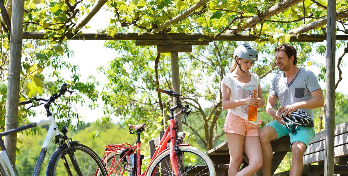 Kerékpártúrák Burgenlandban
