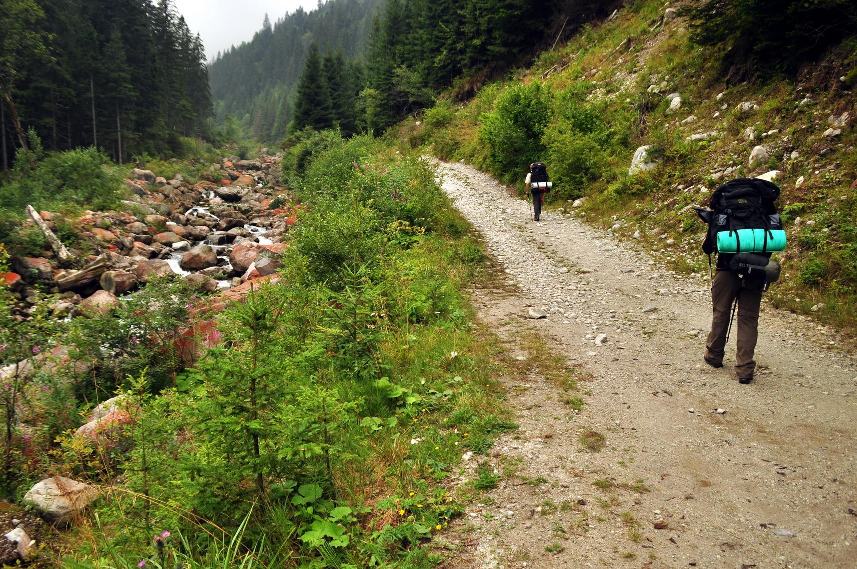 Színkavalkád az út mentén és unalom az úton Forrás: Paraferee - mozgasvilag.hu